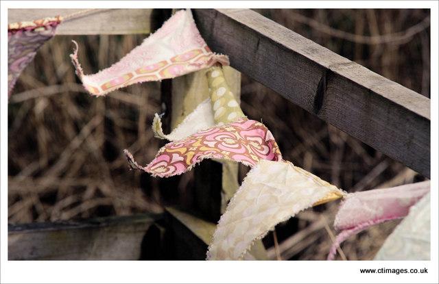 lancaster wedding photography leighton moss nature